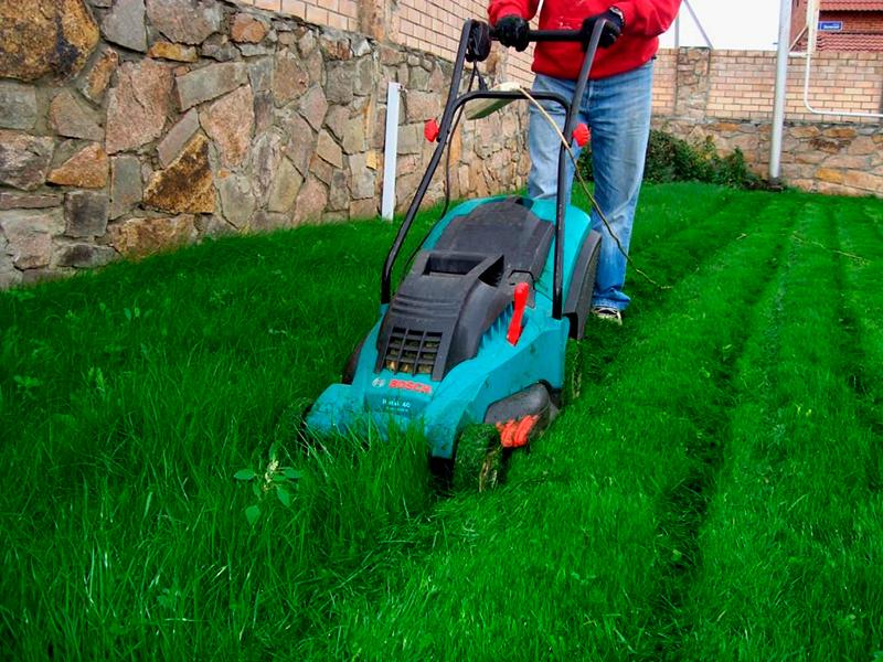 Советы, как стричь газон